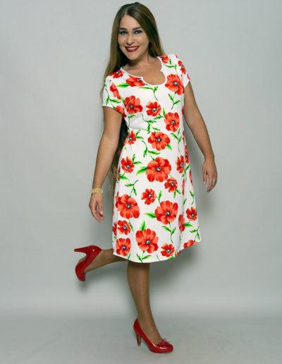 Samba Kleid 42